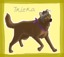 Trade - Triera by shelzie