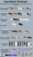 Equus Ballator Phenotypes by Fargonon
