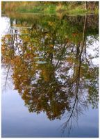 Autumn Reflected by k-ee-ran