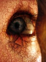 My Eye--Manipulation by Holly6669666