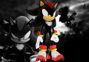 shadow the hedgehog (updating skill) by eggmanteen