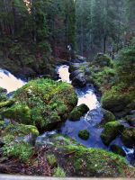 Triberg Waterfall 2 by LadyLolth