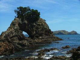 Bay of islands New Zealand by davox1