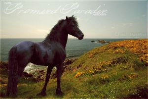 friesian by renderedsublime