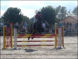 Lamotte.Beuvron.2008_VIII by Lec3H-All
