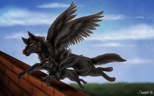 Fly with me by TheDaylightWolf
