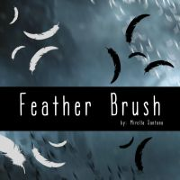 feather brush by MirellaSantana