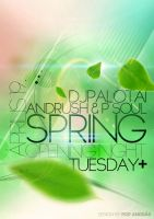 Spring Opening Night Flyer by andraspop