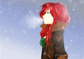 Winter wondering by Akanetto