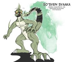 Character Design #036 [So'sven Svaaka] by Raccooncube