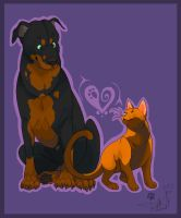 Cat and Dog by Dragodog3496