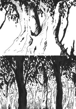 Tree Sketches by IsySheldon