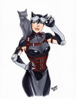 Catwoman by jaisamp