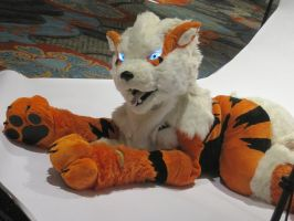 A-Kon 24 -- Kiba the Arcanine by TaoKyuubimon