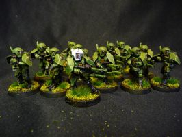 Emerald Line Fire Warriors Gold Squad by Solav