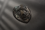 Star Trek SCIS Badge by thatgeekchick