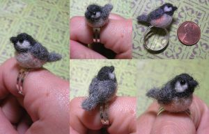 Chickadee Ring by Zinkyu