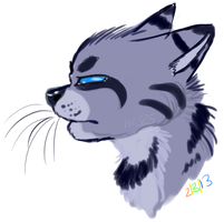Jayfeather doodle by Porygoon