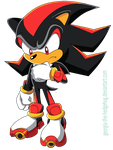 Shadow The Hedgehog by Angie--Wolf