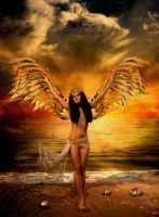 On golden wings by TinaLouiseUk