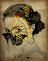 Emmy and the Butterflies by shuckaby