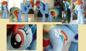 Rainbow Dash additional views by LavenderExtract