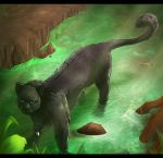 In the swamp by SweetLhuna