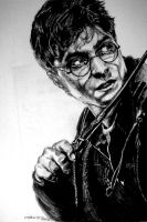 Harry Potter by mynamescrizelle