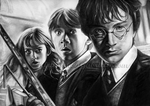 Harry, Ron, and Hermione by gabbyd70