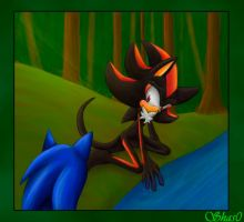 Sonic and Shadow by Shas0