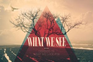 What We See by vik-west