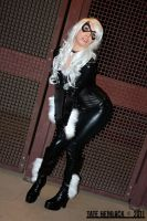 Angelica as Black Cat 02 by tatehemlock