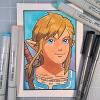 Breath of the Wild Link by D-MAC