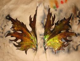 Autumn faery wings in progress by S0WIL0