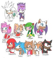 Me and my Sonic Friends by cmara