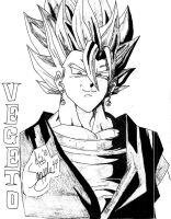vegeto 2 by snapple44