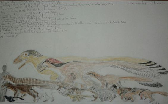 Dromaeosaurs of North America by Boreonykus