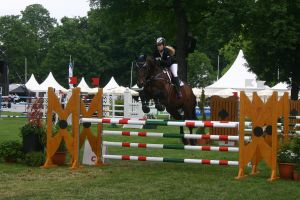 Show Jumping Stock 029 by LuDa-Stock