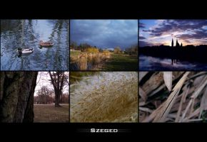 Szeged by conceptions