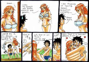 Luffy x Nami, breast by heivais