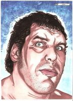 Andre the Giant by DredFunn