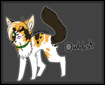 Owldust Temporary Ref by Sinister-Seas