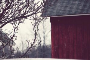 The Barn on 200 by fotomademoiselle