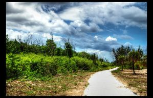 Lucayan Trail by shuttermonkey