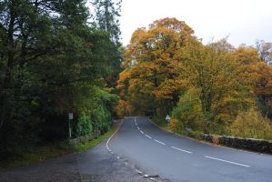 Country road by alanhay