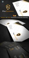 RW Professional Corporate ID by Reclameworks