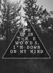 Up in the WOODS by CohenRon