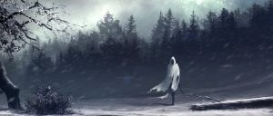 Winter 2013 by artificialdesign