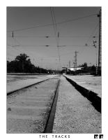 Tracks by goldmines