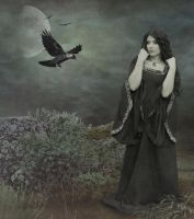 Princess of the Crows.. by WelshDragonStockNArt